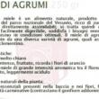 presentazione tipico italico