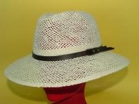 cappelli 14002