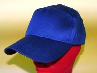 cappelli 14081 1