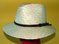 cappelli 14105