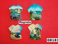 magnete 08181