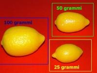 sapori limone 08045 100